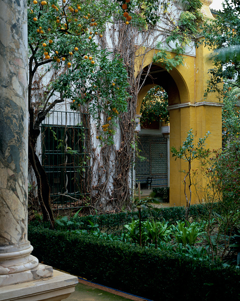 Architectural Feature「Entrance of a building with pillar and garden」:写真・画像(18)[壁紙.com]