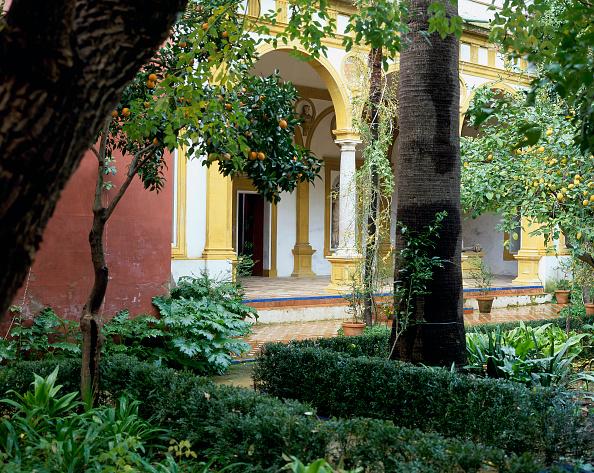 Casa De Pilatos「Entrance of a building with garden and trees」:写真・画像(10)[壁紙.com]