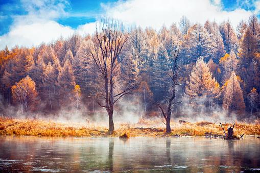 季節「秋の風景」:スマホ壁紙(4)