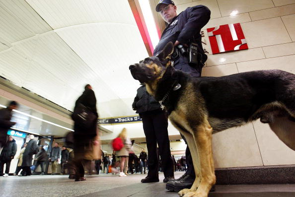 Security「New York Subway Security Is Tightened」:写真・画像(3)[壁紙.com]
