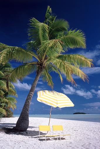 Aitutaki Lagoon「Umbrella and Beach Chairs Under Palm Tree」:スマホ壁紙(2)