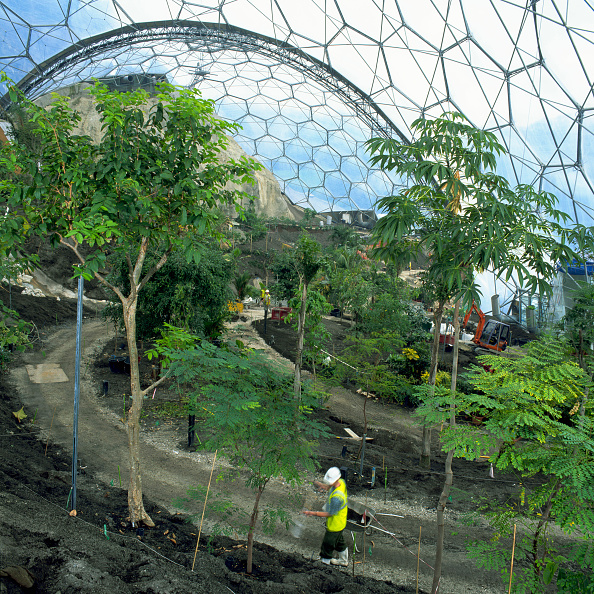 Architectural Dome「Landscaping works inside biome at the Eden Project, Cornwall, United Kingdom Designed by Nicholas Grimshaw and Partners」:写真・画像(17)[壁紙.com]