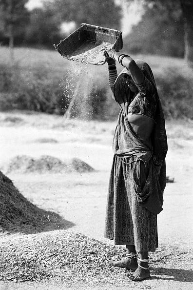 Agriculture「Woman Winnowing」:写真・画像(8)[壁紙.com]