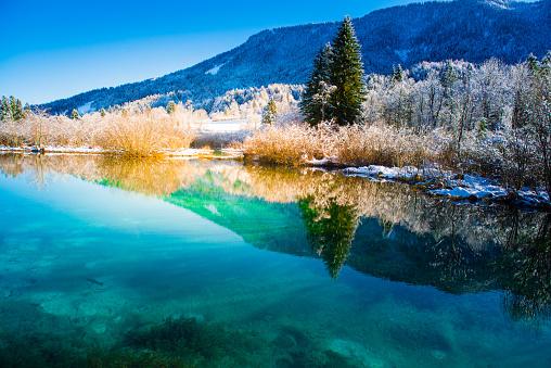 Fairy Tale「Green Water of Zelenci in Winter」:スマホ壁紙(4)