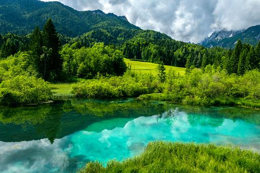 European Alps「Green water, Zelenci, Triglav National Park, Gorenjska, Julian Alps, Slovenia, Europe」:スマホ壁紙(12)