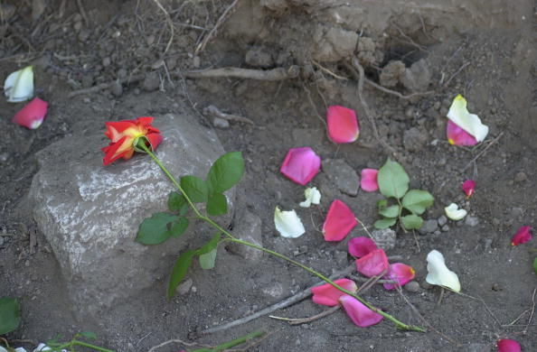 Shallow「Murdered Los Lobos Wife Found」:写真・画像(17)[壁紙.com]