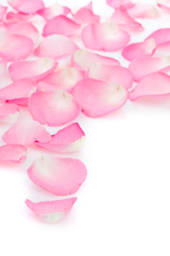 Health Spa「Rose Petals  with copy space」:スマホ壁紙(18)