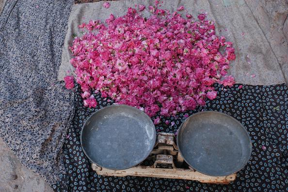 Petal「Kandovan Roses」:写真・画像(13)[壁紙.com]
