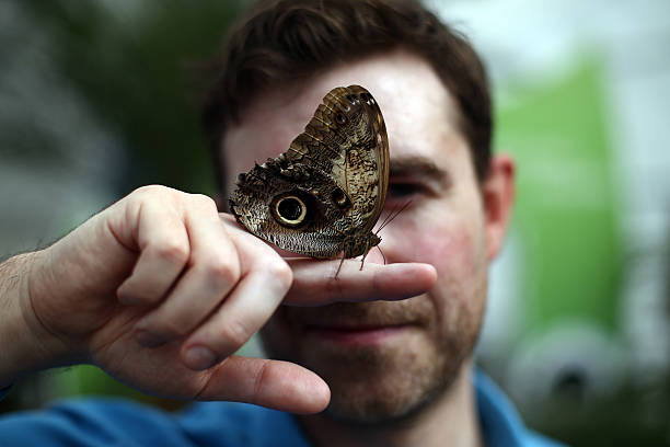Sensational Butterflies Exhibition Launches With Hundreds Released:ニュース(壁紙.com)