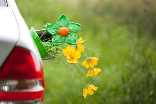 Teenager「Car with flowers in the tank lid - Renewable energy」:スマホ壁紙(4)