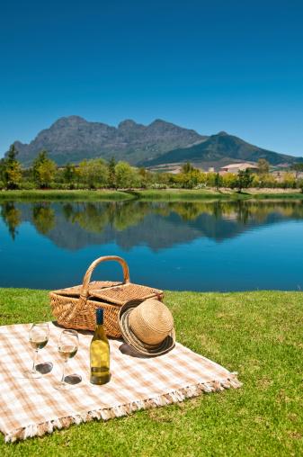 Picnic「Wine Tasting in South Africa」:スマホ壁紙(0)