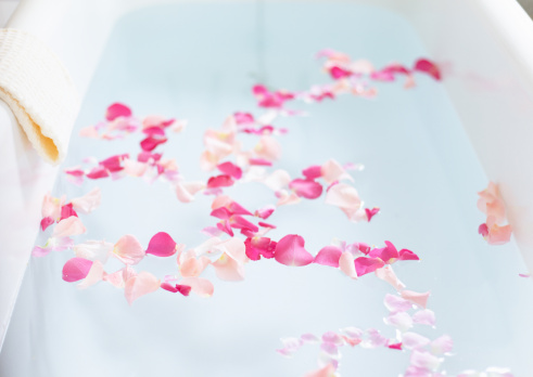 薔薇「Flower bath」:スマホ壁紙(12)