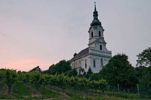 Middle Class「The Kaasgrabenkirche In Grinzing」:写真・画像(7)[壁紙.com]