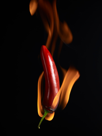Chili Con Carne「Flaming Hot Pepper on a black background」:スマホ壁紙(5)