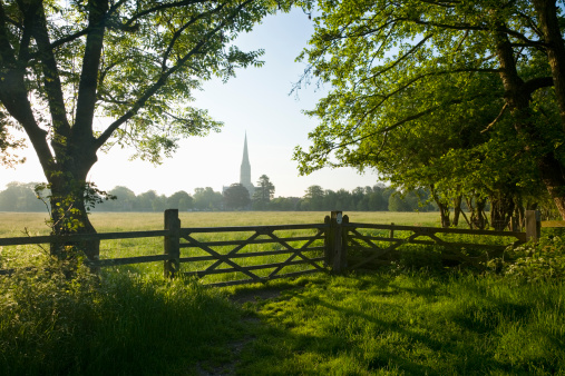 Emergency Services Occupation「Idyllic view of Salisbury Cathedral spire from across Harnham Water Meadows」:スマホ壁紙(2)