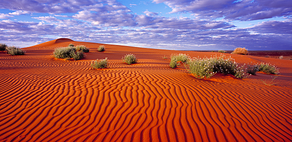 South Australia「Simpson Desert」:スマホ壁紙(2)