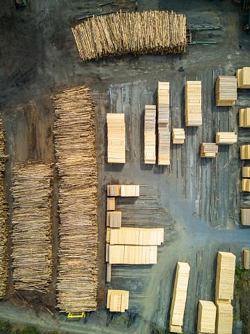 Deforestation「Planks and Tree Trunks in Sawmill」:スマホ壁紙(6)