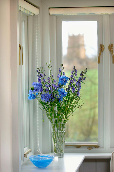 Focus On Foreground「Flowers in a vase on the window board of a house with views of a village church UK」:写真・画像(13)[壁紙.com]