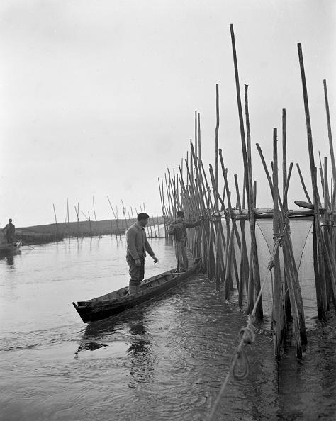 Lagoon「'Fishing Eels'」:写真・画像(17)[壁紙.com]
