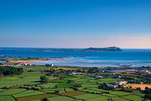 Jeju Island「Jeju's Fields and Seas VD702」:スマホ壁紙(5)