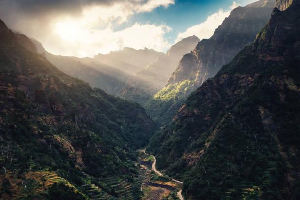 Madeira Island:スマホ壁紙(壁紙.com)