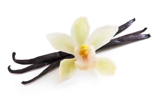 花「バニラビーンズ、オーキッド」:スマホ壁紙(8)