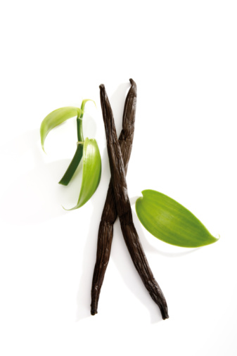 Vanilla「Vanilla beans (Vanilla planifolia)」:スマホ壁紙(10)