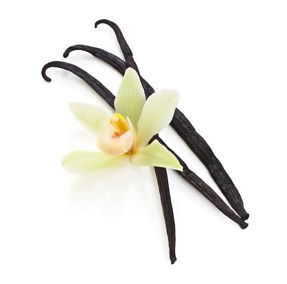 Vanilla「Vanilla beans and an orchid on white」:スマホ壁紙(11)