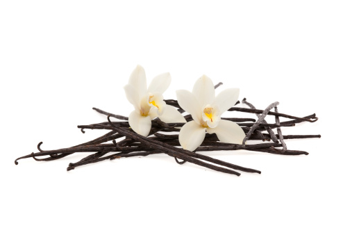 Vanilla「vanilla beans and flowers」:スマホ壁紙(19)