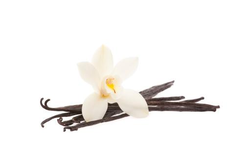Vanilla「vanilla beans with orchid」:スマホ壁紙(13)