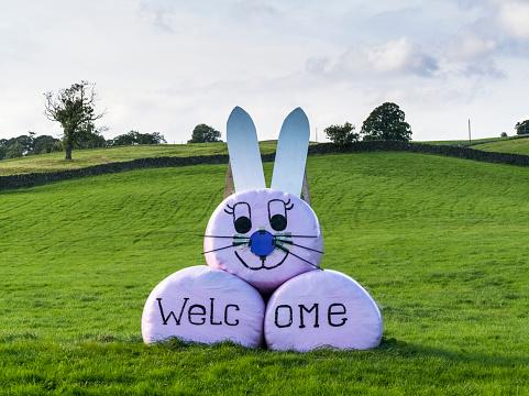 うさぎ「Wrapped hay bales decorated at a bunny rabbit and welcome sign」:スマホ壁紙(6)