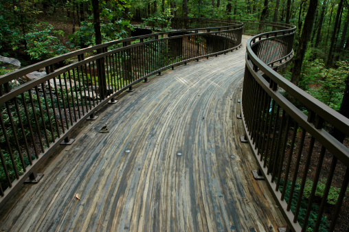 Arkansas「Foot Bridge into Woodlands」:スマホ壁紙(1)