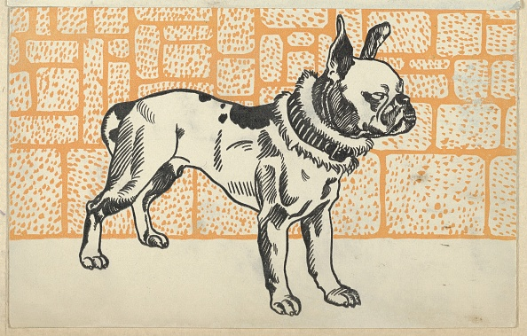 Chromolithograph「Pitbull Terrier」:写真・画像(12)[壁紙.com]