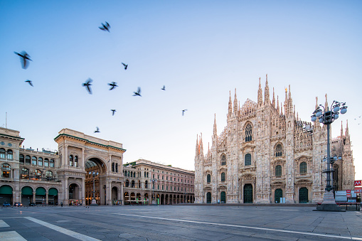 Italian Culture「the Piazza del Duomo at dawn」:スマホ壁紙(2)