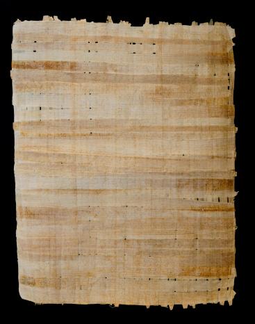北アフリカ「パピルス」:スマホ壁紙(13)