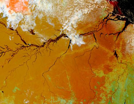 Amazon Rainforest「The Amazon Rainforest in northern Brazil.」:スマホ壁紙(10)