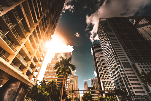Miami「miami brickell downtown at dusk」:スマホ壁紙(8)