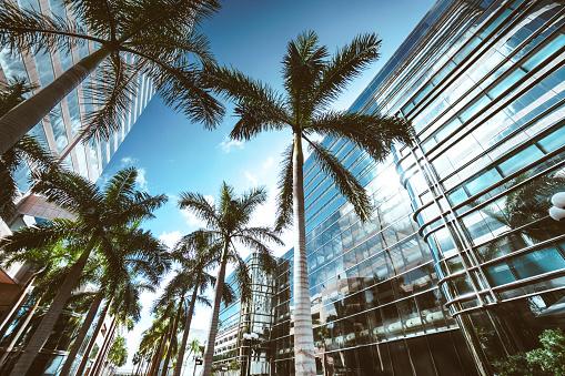 Miami「miami brickell downtown at dusk」:スマホ壁紙(0)