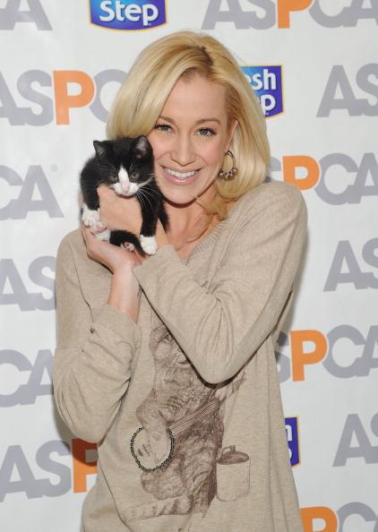 子猫「Kellie Pickler Unveils The Fresh Step Limited-Edition Cat Sweater Benefiting The ASPCA」:写真・画像(19)[壁紙.com]