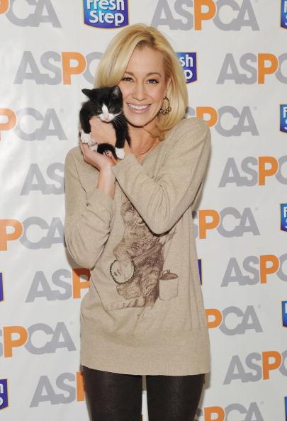 子猫「Kellie Pickler Unveils The Fresh Step Limited-Edition Cat Sweater Benefiting The ASPCA」:写真・画像(18)[壁紙.com]