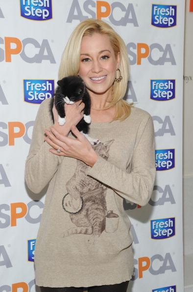 子猫「Kellie Pickler Unveils The Fresh Step Limited-Edition Cat Sweater Benefiting The ASPCA」:写真・画像(16)[壁紙.com]