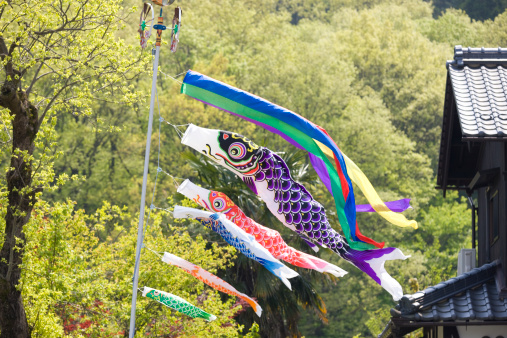 Koinobori「Carp Shaped Streamer」:スマホ壁紙(9)