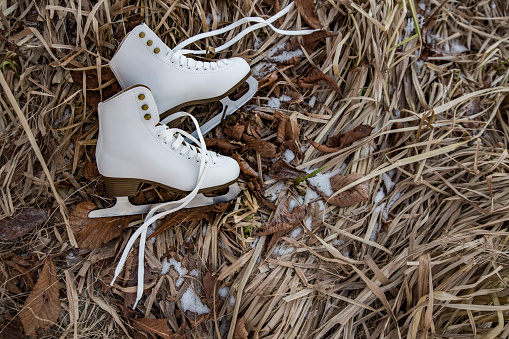 Frozen「Ice skates lying in icy weeds」:スマホ壁紙(18)