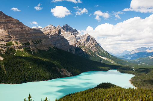Boreal Forest「The stunningly beautiful Peyto Lake in the Canadian Rockies.」:スマホ壁紙(19)