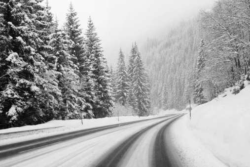 Mountain Pass「Winter road and evergreen trees after a snowstorm」:スマホ壁紙(3)