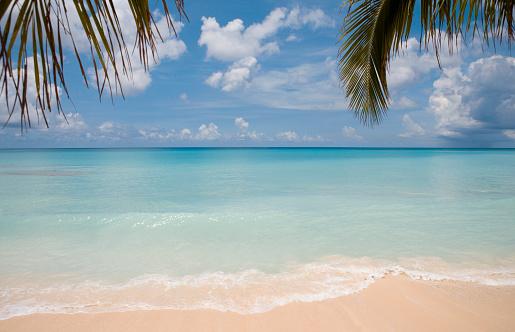 ケイマン諸島「Cayman Islands, Grand Cayman, tropical beach」:スマホ壁紙(14)