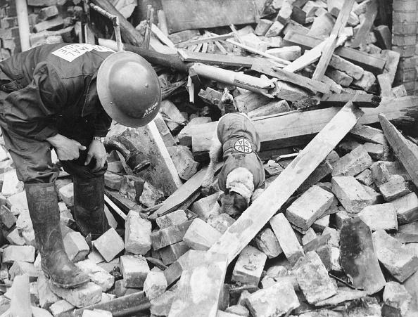 Fred Morley「Rescue Dog」:写真・画像(15)[壁紙.com]