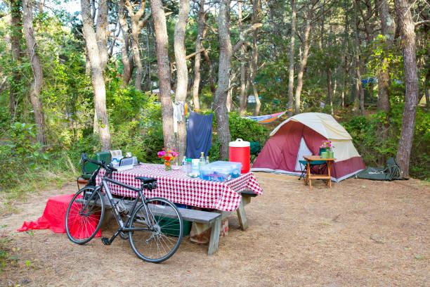 Campsite in the woods.:スマホ壁紙(壁紙.com)