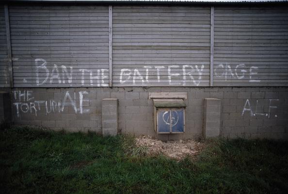Graffiti「ALF Grafitti」:写真・画像(7)[壁紙.com]