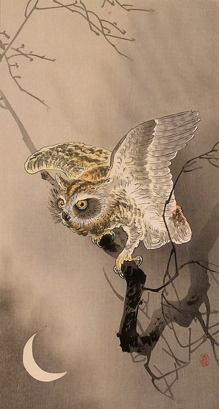 Animal Body Part「Owl with Wings Spread and Crescent Moon」:写真・画像(6)[壁紙.com]